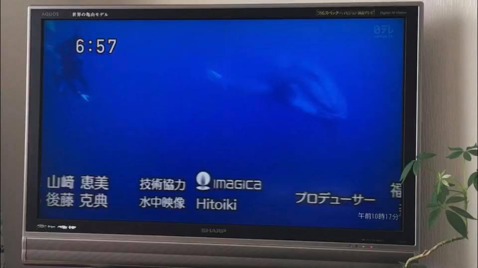 クジラ・水中・遠くへ行きたい