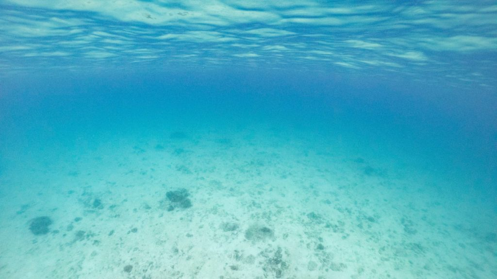 瀬底島東白砂