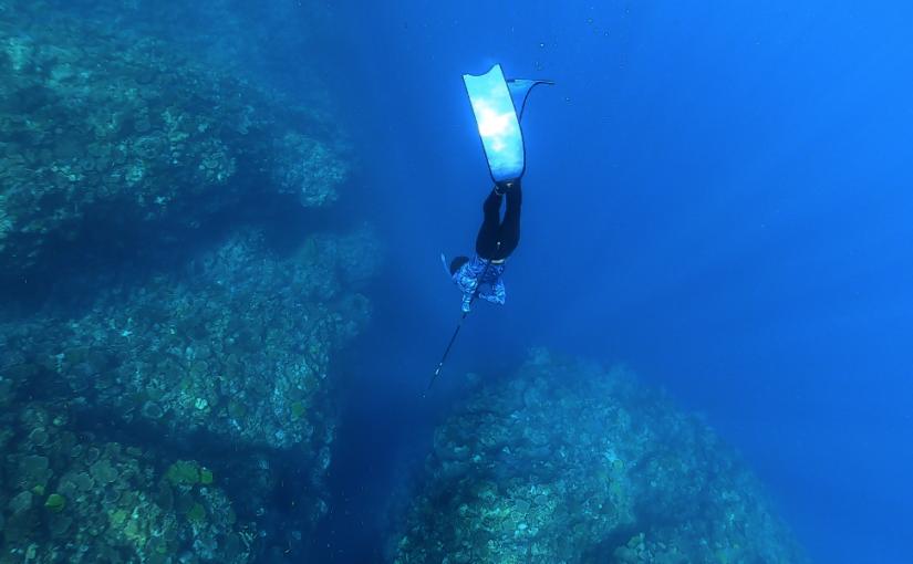 沖縄で魚突きは違法?アポガマで魚突きを初体験